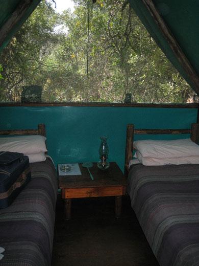 interno di una delle tende con vista sul bush