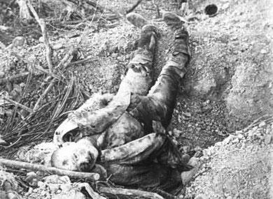 Kriegsopfer 1 Weltkrieg