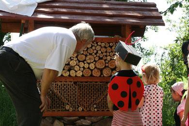 Ein neues Zuhause für Käfer, Bienen und andere Krabbeltiere. Foto: S. Weirauch