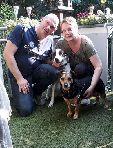 Kora (hinten, nun Mila) fand ihre Familie bei unserem Dobby in Emsdetten.