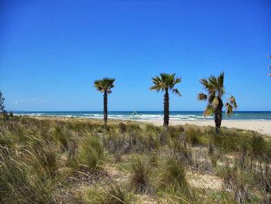 Strand von Oliva Spanien