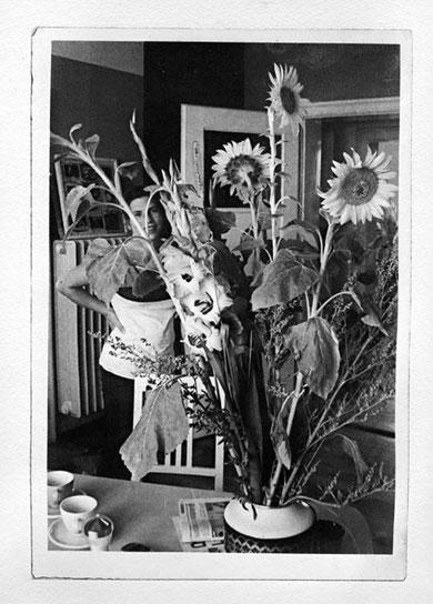Sonnenblumen, Intagliotypie