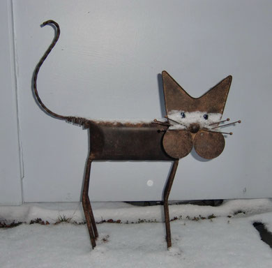 Mein Terrassenkatzi mit Schneeschnurrbart