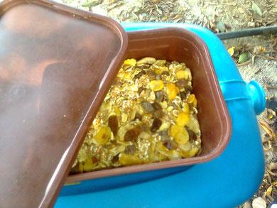 richtig! Udo's Müsli-Behälter, der die Nahrungsergänzug von Udo schon durch halb Europa frischhält (Frage: wann will er das Müsli essen? Übermorgen sind wir bereits auf der Rückreise)
