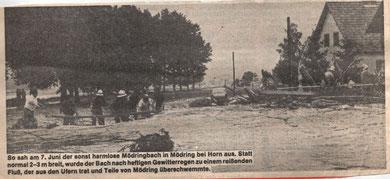 NÖN Horn/Eggenburg KW 24/1979