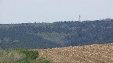 Blick auf den restaurierten Turm des Beinhauses