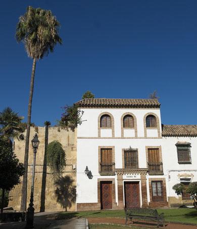 Photographie, Espagne, Andalousie, Cordoue, san basilio, palmier, rue, maison blanche, colonne, ombres, Mathieu Guillochon