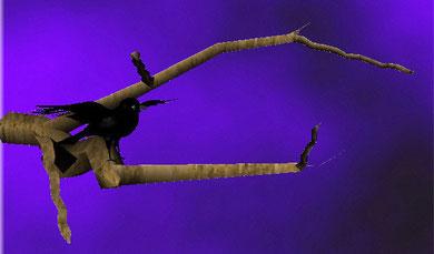 corbeau sur branche