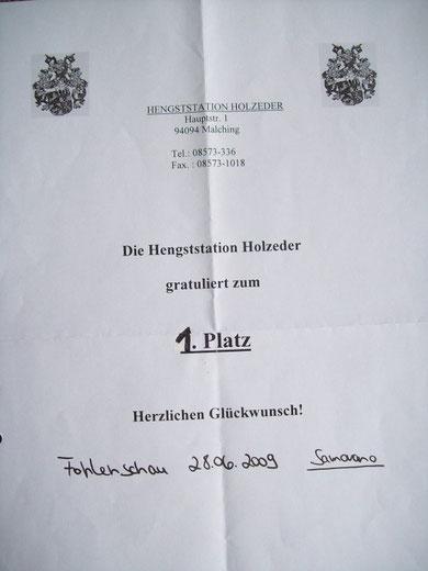 Platzierung Fohlenschau Holzeder