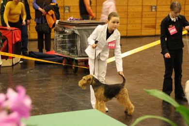 1. Platz Juniorhandling AK 1 Castrop Rauxel 30.1.2010 mit Henry