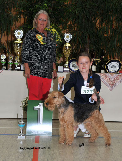 Tagessieger Juniorhandling Klubsieger Bensheim 26.8.2012 mit Henry