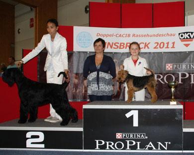 Tagessieger Juniorhandling CACIB Innsbruck 14.8.2011 mit Franziska