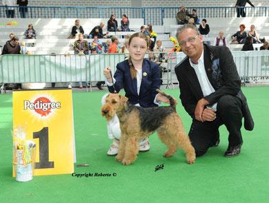 1. Platz Juniorhandling AK 1 CACIB Lingen 29.4.2012 mit Henry