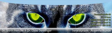 Tierarztpraxis für Augenheilkunde Bonn