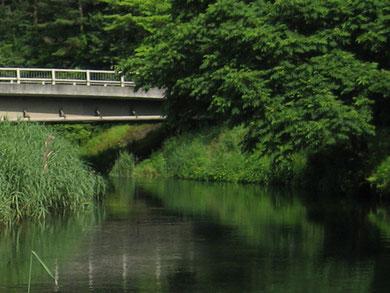 自衛隊橋下流のフラットな流れ