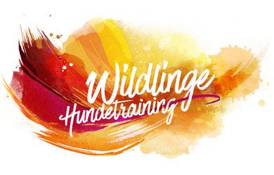 Wildlinge Hundetraining in Duisburg Großenbaum, Wedau, Buchholz, Rheinhausen und am Niederrhein Straelen