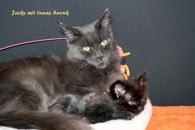 Jacky übt sich als Mutti mit Lunas Adina