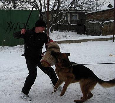 Ярант фон Нордэн(Бару с Каменной Земли-Нэксия фон Нордэн) на занятии по защите 09.01.11