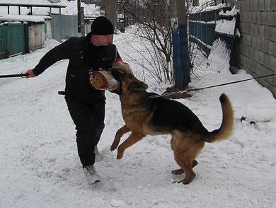 Яррас фон Нордэн(Бару с Каменной Земли-Нэксия фон Нордэн) на занятии по защите 09.01.11.