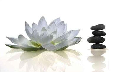 soins bien tre sur saint brieuc 22 soins bien tre massage sur saint brieuc 22. Black Bedroom Furniture Sets. Home Design Ideas