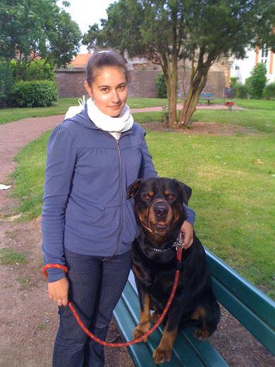 Saphir en promenade