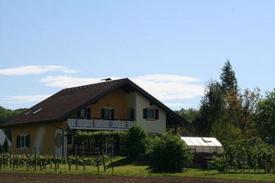 Garten Gästehaus Hillberger