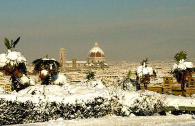 雪の写真は、当日ミケランジェロ広場にいた幸福な友人が撮ってメーリングリストに送ってくれたものです。