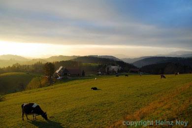 Abendstimmung bei St. Märgen Schwarzwald