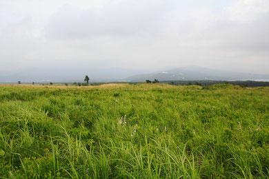 とにかく広大な草原が続く。滅多に人に出会わない。