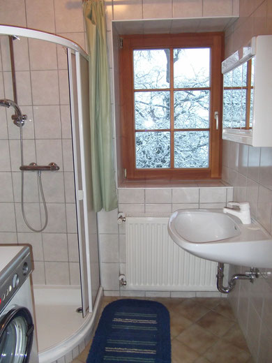 Bathroom- Appartment