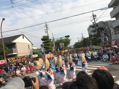 太閤祭  阿波おどり(2017.5.14)