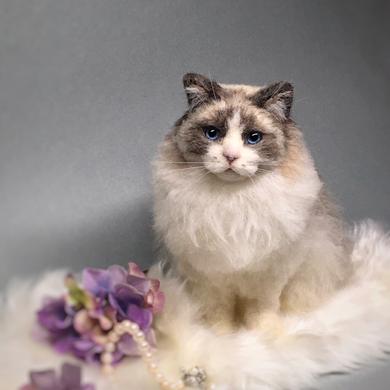 羊毛フェルト ラグドール猫 needlefelted cat   ragdoll