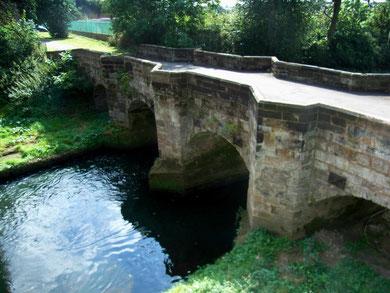 The zig-zag bridge