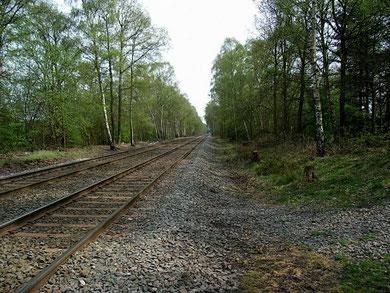 The Wolverhampton-Walsall Railway