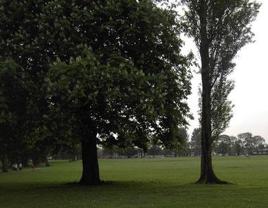Selly Oak Recreation Ground