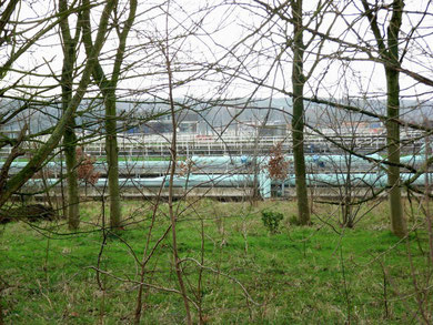 Minworth sewage works is well screened behind the trees