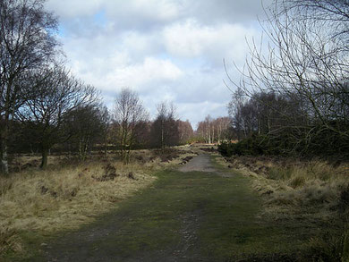 The Roman road at the north end of Sutton Park. Image by Row17/ John Horton on Geograph SP0897 reusable under Creative Commons licence Attribution-ShareAlike 2.0 Generic (CC BY-SA 2.0)