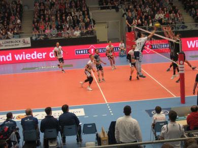 Volleyball-Bundesliga: Lüneburg gegen Berlin