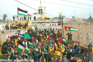 Modstanden i Bilin mod apartheidsmuren