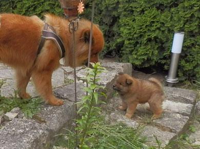 Avito mit seinem Sohn Anton