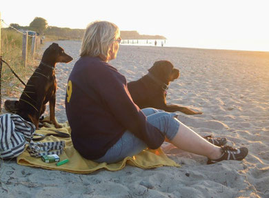 Fini, Spike und Frauchen genießen den Sonnenuntergang !!