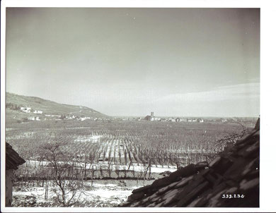 Sigolsheim seen from Kientzheim, photo taken January 2, 1945 (Photo courtesy the National Archives)