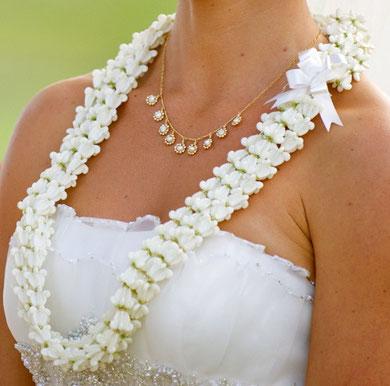 Triple strand white crown flower lei website of halatropicalflowers triple strand white crown flower lei mightylinksfo