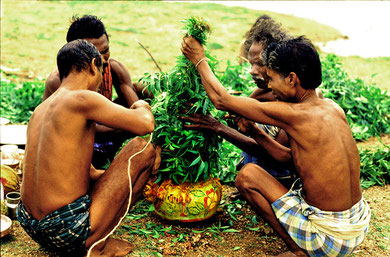 The Irular prepare an idol of their Godess with Neem leaf for their annual four days Festival.