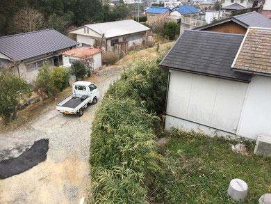 綾川町にて高所剪定