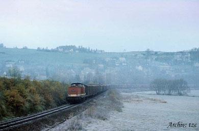 Güterzug mit Diesellok der Baureihe 110 vor Eibenberg © Archiv tzc