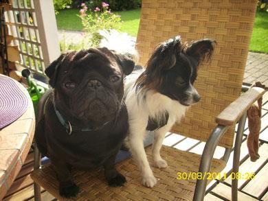 Pippo mit seinem neuen Freund Paul