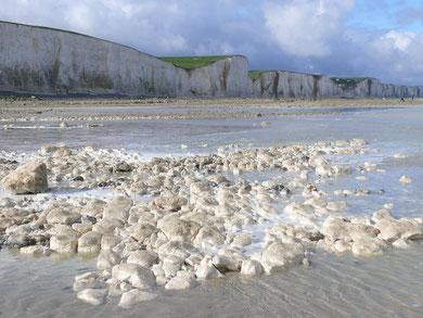 Falaises, Ault, Le Bois de Cise, Baie de Somme, fossiles, oursins, dinosaures, galets, oiseaux