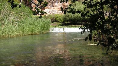 Israele, sorgenti del fiume Giordano
