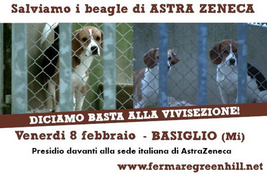 astra zeneca dog angels onlus